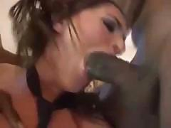 Tori Black goes after a monster black cock and sucks and fucks