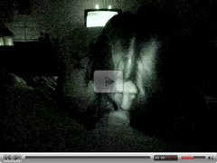 POV Amature night vision blowjob BBW