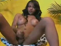 Thai Ladyboy Strokes and Cums