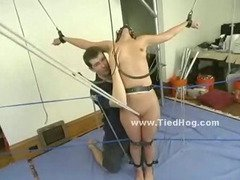 Curly slut bound in cuffs and chains on her belly with legs tied from hands is spanked and abused