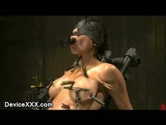 Bound gagged babe with spread legs zippered with clothes pins and fucked