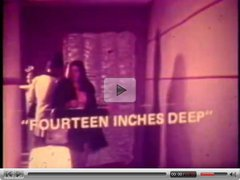 Vintage: John Holmes Fourteen Inches Deep