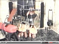 Young male slaves humiliated and penetrated