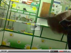 rus Public Masturb Flash PHARMACY Pester GIRL 63 - NV