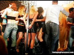 Slutty party chicks sucking dicks in club