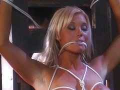 Blond farm girls bondage sex is amazing