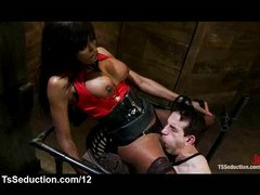 Black tranny fuck bound guy in mouth