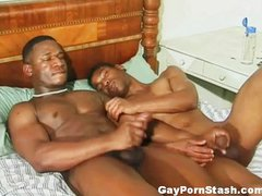 Gay Black Studs Compilation 1