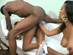 Randy ebony girls humping