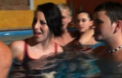 Sizzling whore give head in stinky pool in group sex orgy