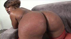 Plump black hooker Brownie Delux pleases her lover by giving blowjob