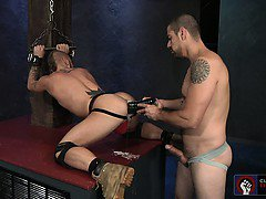 Cylus opens his hole and easily swallows the enormous dildo.