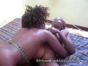 African lesbian babes dive face first into each others black pussy