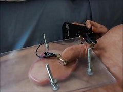 Squashed balls with elec cock torture cbt