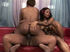 Big Booty Black Girls Sharing Dick Together In Threesome