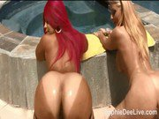 Sophie Dee and Pinky take on young stud poolside