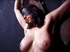 Big tits hottie ends up with clothes pegs all over her tits in a BDSM session