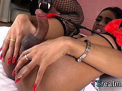 Exotic Shemale Michelle Z Plays With Her Big Cock