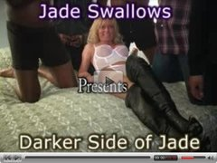 Jade swallows 1