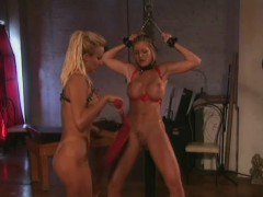 Big breasted lesbians in lingerie pleasing each other's fiery pussies