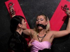 Stud gets walked around on a chain in some sexy femdom act