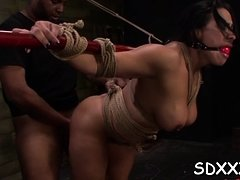 Chick gets wet from riding large penis while being in ropes