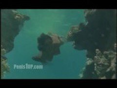 Phoebe Cates - Paradise (stripping-swimming nude underwater)