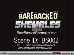 Shemale Sweet Sucking and Bareback