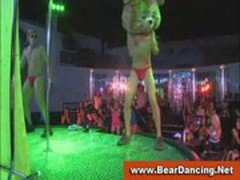 Bachelorettes suck male strippers at cfnm party