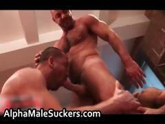 Carlos Cox Trojan Rock and Rocky Torrez part4