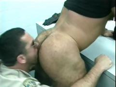 Gratis homo bears fucked and sucked part2